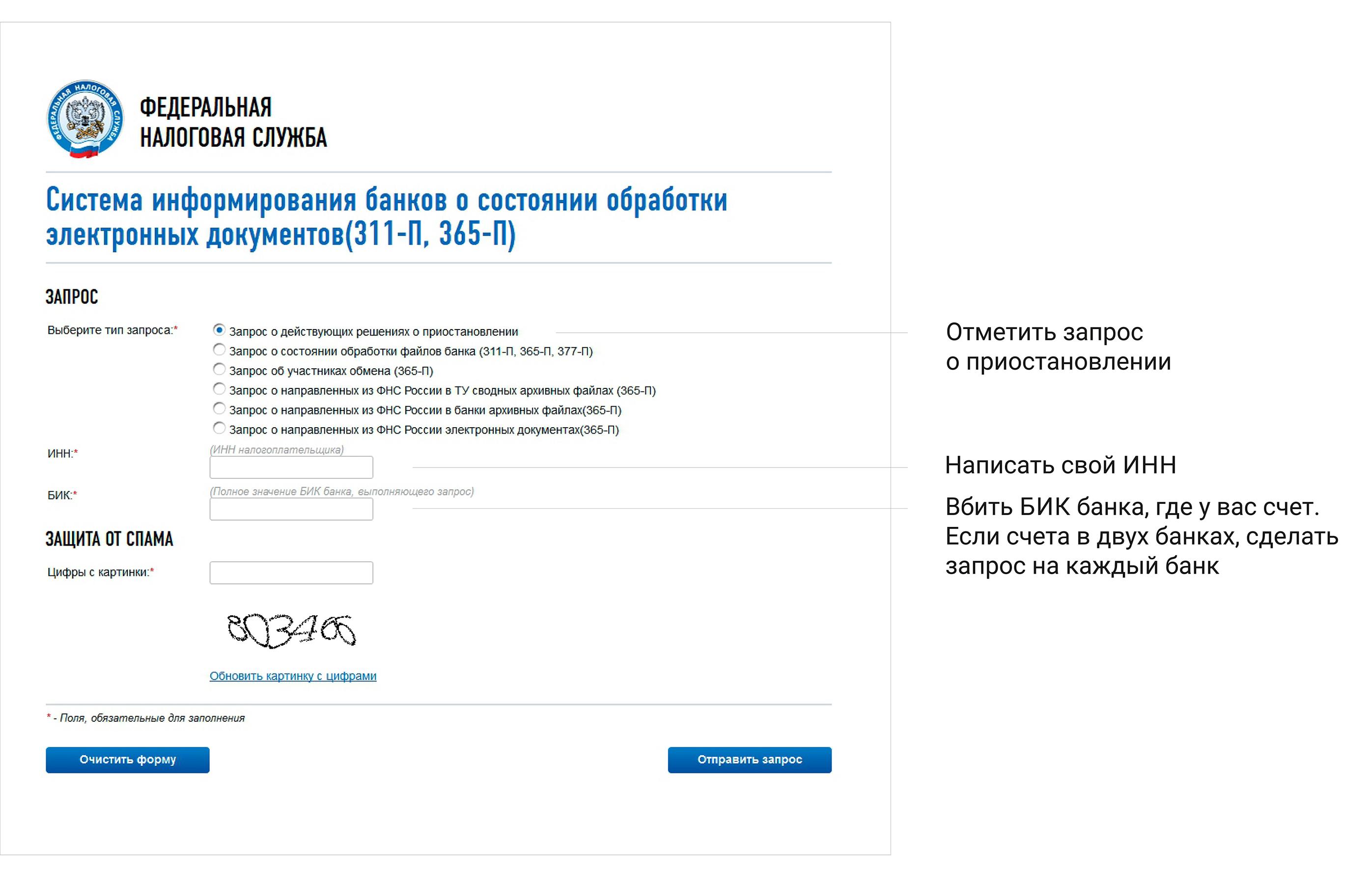 Рисунок 2. Окно ввода запроса Системы информирования банков